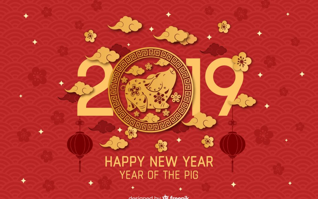 cochon, 2019 happy new year