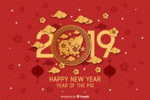 cochon, 2019 happy new year