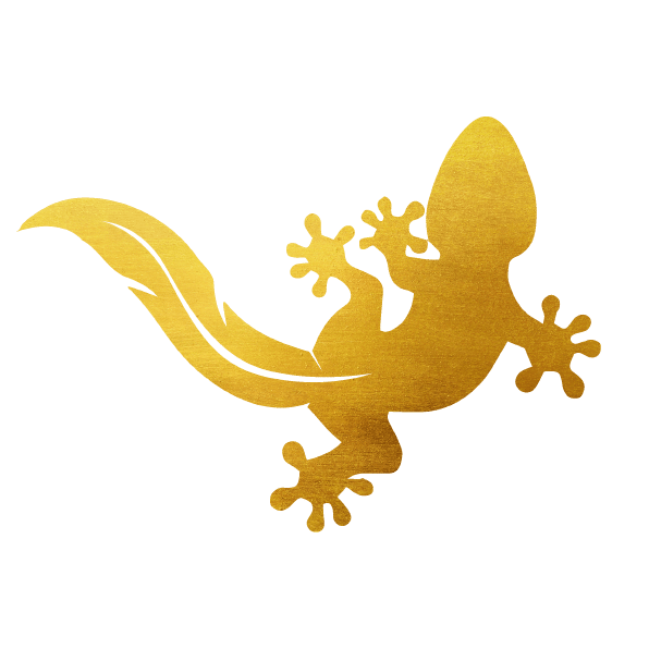 Salamandre dorée