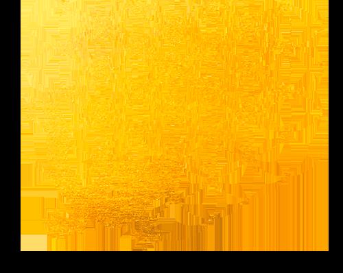 Fleur de vie et salamandre doré