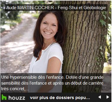 Lien vers un article Houzz : Retrouvez l'harmonie chez soi grâce au Feng-Shui