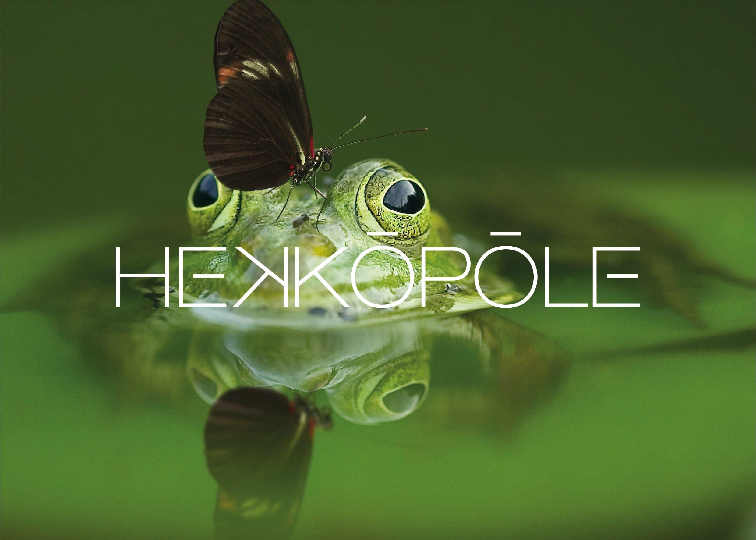 Hekkôpôle logo